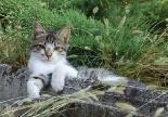 A Frigeri Partner after an intense meeting enjoys relax time at plant's garden